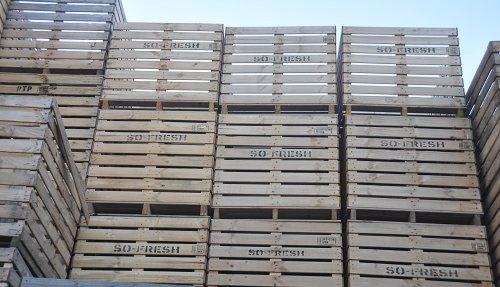 nieuwe kisten hoeve pallets